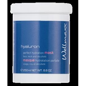 hyaluron perfect hydratation mask